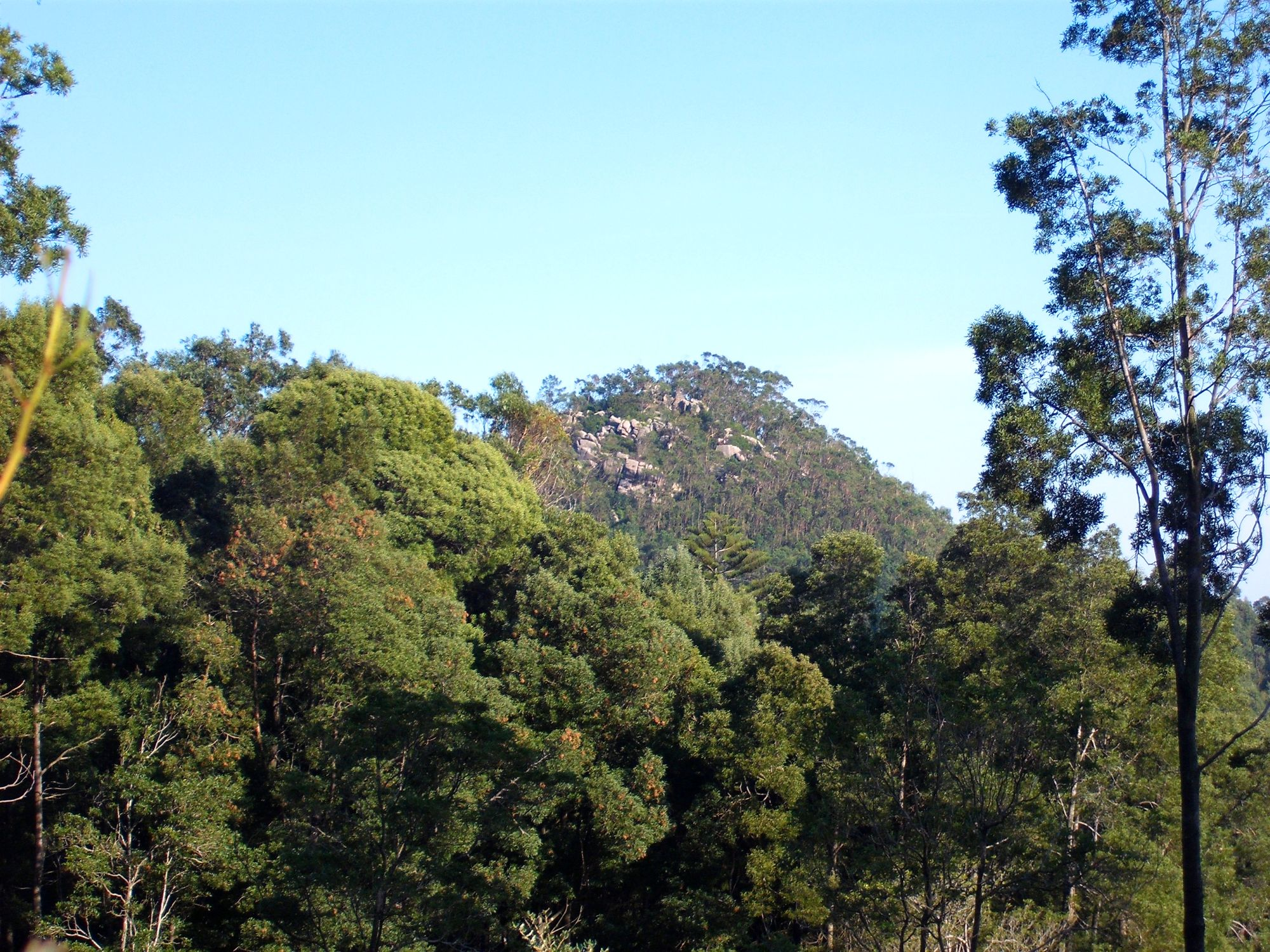 Monte Cubelo
