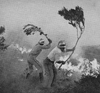 Grande Incêndio de 6 Setembro de 1966