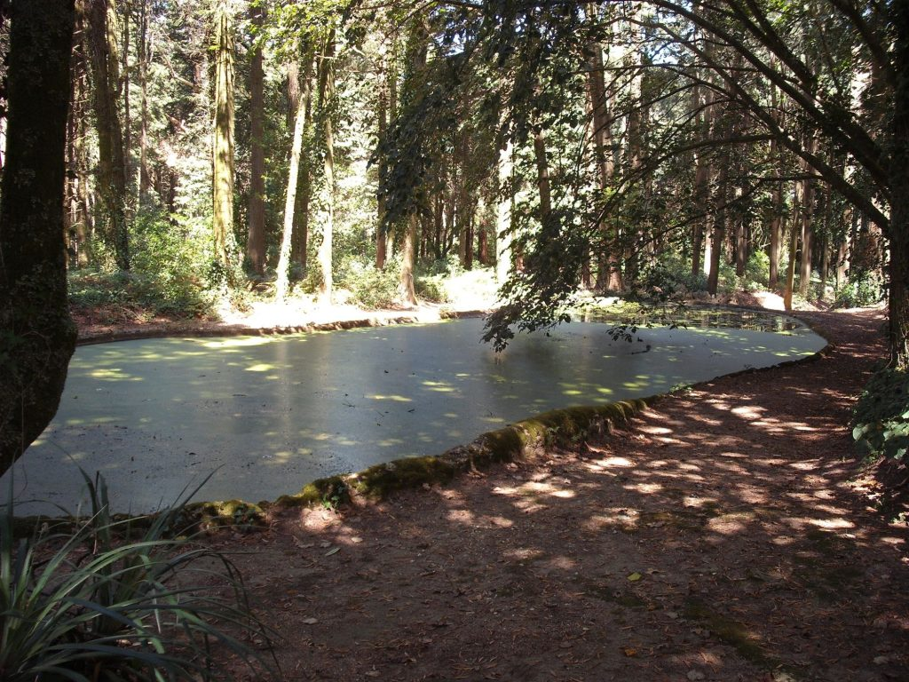 O lago de Cascais
