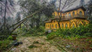 Ciclone de 19-01-2013 na Serra de Sintra