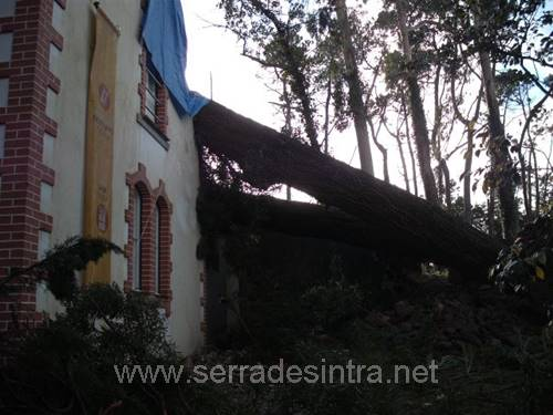 Ciclone de 19 01 2013 na Serra de Sintra 22 Ciclone de 19-01-2013