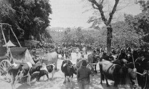 Cintra em 1926 - Feira de S. Pedro