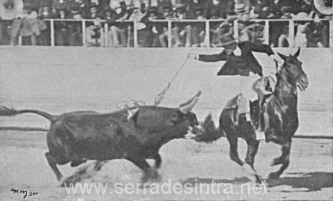 Tourada em Cintra 2 Praça de touros de Sintra