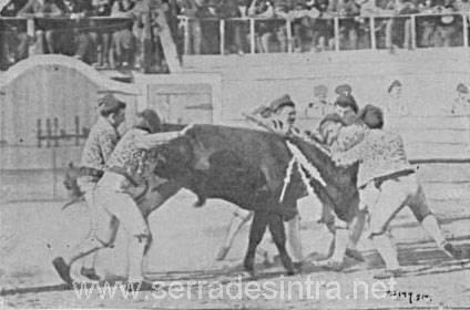 Tourada em Cintra 4 Praça de touros de Sintra